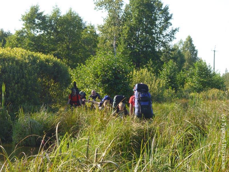 Турклуб «ВЕРТИКАЛЬ» идет в пеший поход по Мещерским болотам